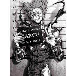 Poster Toile One Punch Man Garou 40x50cm Official Dr. Stone Merch